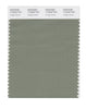 Pantone SMART Color Swatch 17-6323 TCX Hedge Green