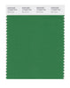 Pantone SMART Color Swatch 17-6333 TCX Mint Green