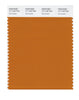 Pantone SMART Color Swatch 17-1140 TCX Marmalade