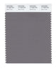 Pantone SMART Color Swatch 17-1503 TCX Storm Front