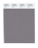 Pantone SMART Color Swatch 17-4014 TCX Titanium