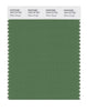 Pantone SMART Color Swatch 18-0119 TCX Willow Bough