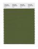 Pantone SMART Color Swatch 18-0228 TCX Pesto