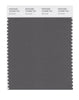 Pantone SMART Color Swatch 18-0306 TCX Gunmetal