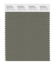 Pantone SMART Color Swatch 18-0312 TCX Deep Lichen Green