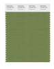 Pantone SMART Color Swatch 18-0332 TCX Grasshopper