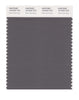 Pantone SMART Color Swatch 18-0403 TCX Dark Gull Gray