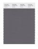 Pantone SMART Color Swatch 18-0503 TCX Gargoyle