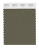 Pantone SMART Color Swatch 18-0521 TCX Burnt Olive