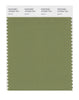 Pantone SMART Color Swatch 18-0525 TCX Iguana