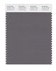 Pantone SMART Color Swatch 18-0601 TCX Charcoal Gray