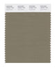 Pantone SMART Color Swatch 18-0617 TCX Covert Green
