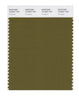 Pantone SMART Color Swatch 18-0627 TCX Fir Green
