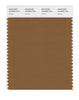 Pantone SMART Color Swatch 18-0933 TCX Rubber