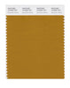 Pantone SMART Color Swatch 18-0935 TCX Buckthorn Brown