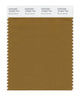 Pantone SMART Color Swatch 18-0937 TCX Bronze Brown