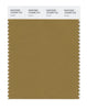 Pantone SMART Color Swatch 18-0939 TCX Cumin