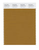 Pantone SMART Color Swatch 18-0940 TCX Golden Brown