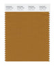 Pantone SMART Color Swatch 18-0950 TCX Cathay Spice