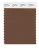 Pantone SMART Color Swatch 18-1027 TCX Bison