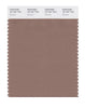 Pantone SMART Color Swatch 18-1321 TCX Brownie