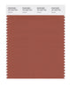 Pantone SMART Color Swatch 18-1343 TCX Auburn