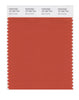 Pantone SMART Color Swatch 18-1354 TCX Burnt Ochre