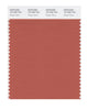 Pantone SMART Color Swatch 18-1535 TCX Ginger Spice