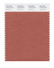 Pantone SMART Color Swatch 18-1537 TCX Copper Coin