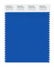 Pantone SMART Color Swatch 18-4244 TCX Directoire Blue