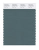 Pantone SMART Color Swatch 18-5410 TCX Silver Pine