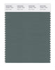 Pantone SMART Color Swatch 18-5611 TCX Dark Forest