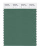 Pantone SMART Color Swatch 18-5621 TCX Fir