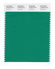 Pantone SMART Color Swatch 18-5642 TCX Golf Green