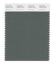 Pantone SMART Color Swatch 18-6011 TCX Duck Green