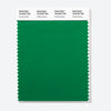 Pantone Polyester Swatch Card 18-6032 TSX Putting Green