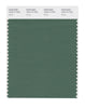 Pantone SMART Color Swatch 18-6114 TCX Myrtle