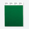 Pantone Polyester Swatch Card 18-6329 TSX Scallion