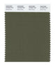 Pantone SMART Color Swatch 18-0523 TCX Winter Moss