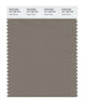 Pantone SMART Color Swatch 18-1108 TCX Fallen Rock