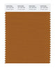 Pantone SMART Color Swatch 18-1163 TCX Pumpkin Spice