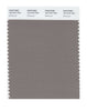 Pantone SMART Color Swatch 18-1210 TCX Driftwood