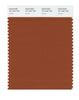 Pantone SMART Color Swatch 18-1246 TCX Umber