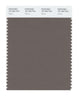 Pantone SMART Color Swatch 18-1304 TCX Falcon
