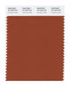 Pantone SMART Color Swatch 18-1345 TCX Cinnamon Stick