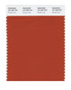 Pantone SMART Color Swatch 18-1355 TCX Rooibos Tea