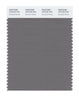 Pantone SMART Color Swatch 18-5102 TCX Brushed Nickel