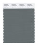 Pantone SMART Color Swatch 18-5806 TCX Agave Green