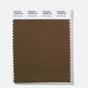 Pantone Polyester Swatch Card 19-0805 TSX Brown Granite