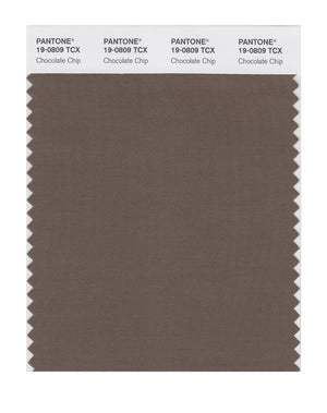 Pantone SMART Color Swatch 19-0809 TCX Chocolate Chip